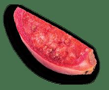 ultrafruit-fruit-cactus