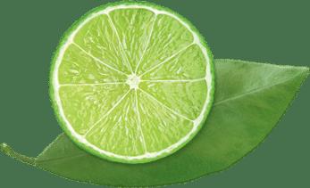 notre-mission-citronvert