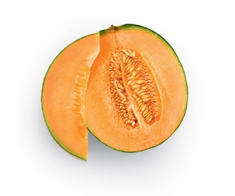 tracabilite-ingredients-melons
